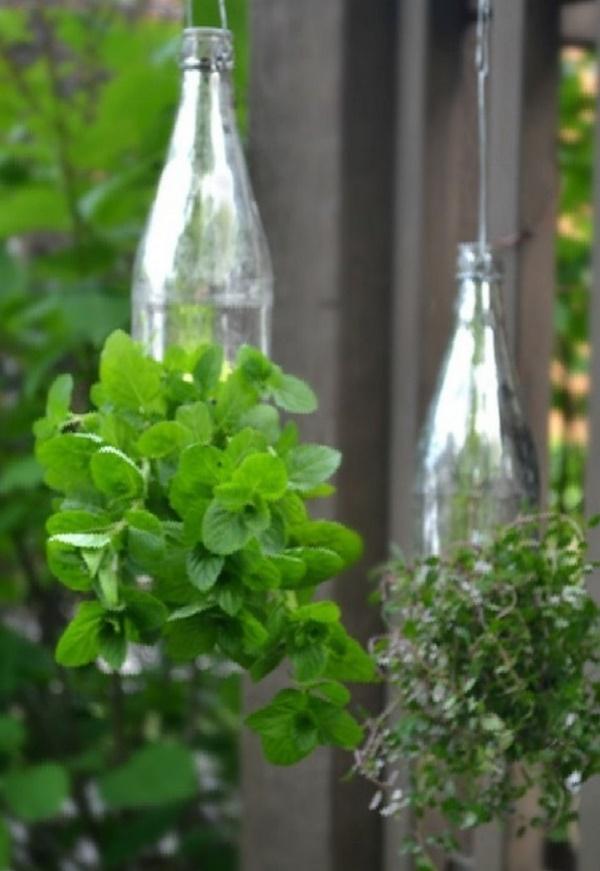 40 Brilliant Plastic Bottle Garden Ideas