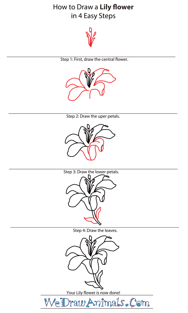flower vases to draw with How To Draw A Flower Step By Step Image Guides on 14 Kids Coloring Pages Adult Flowers And Flower together with Feather Kissing Balls Pom Poms Chandelle Feather Balls Decoration Balls Wedding Balls White together with How To Get The Mediterranean Look likewise Black And White Flowers Drawing as well Homemade Wedding Gifts.