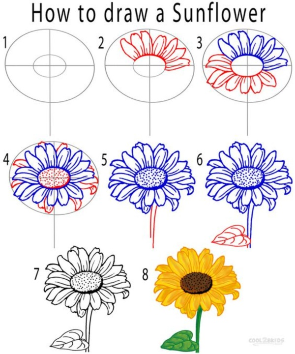 How To Draw A Flower (Step By Step Image Guides