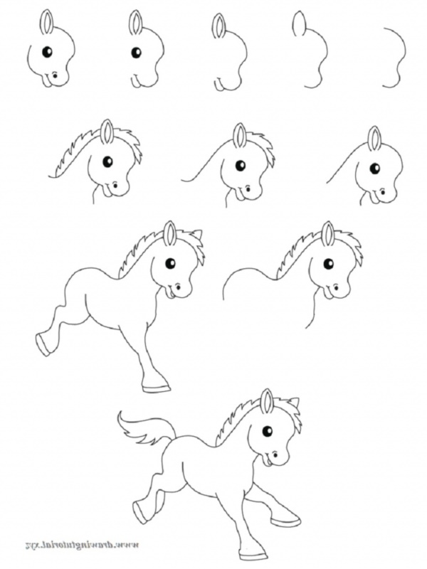 How To Draw Easy Animals Step By Step Image Guide border=
