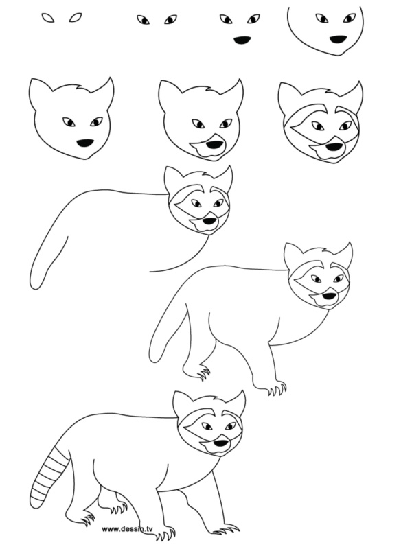 how to draw simple animals step by step