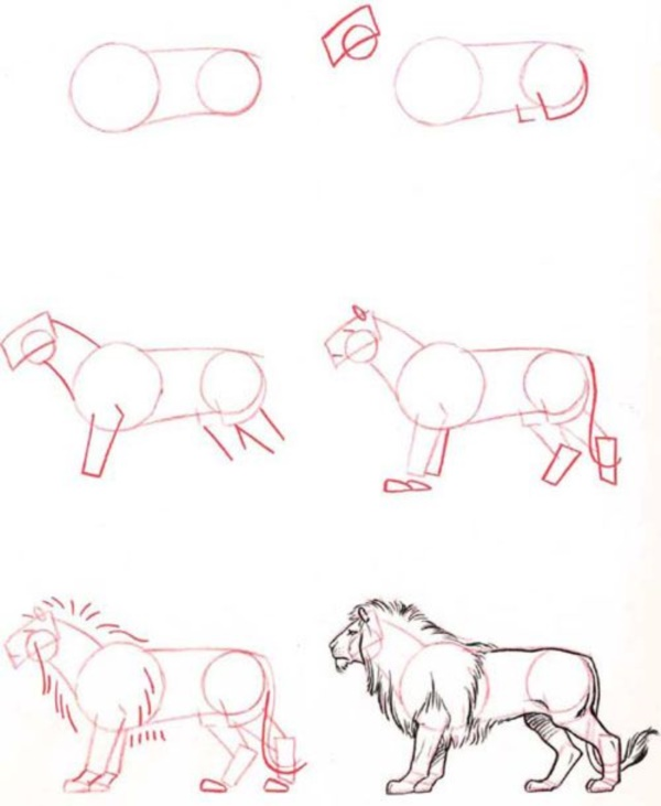 Scribble Drawing Animals : How to draw easy animals photofun ucom
