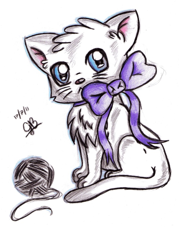 sphynx kitten clothes