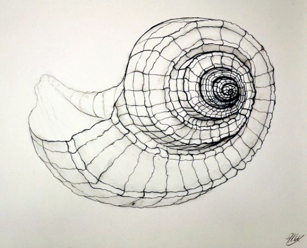 Vector Drawing Lines Examples : Best examples of line drawing art