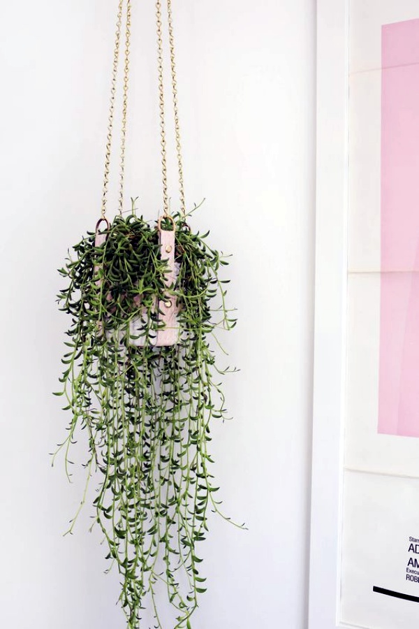 40 so perfect wall hanging plant decor ideas. Black Bedroom Furniture Sets. Home Design Ideas