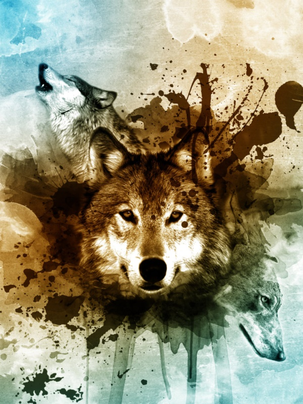 Majestic Wolf Paintings That Will Leave You Amazed