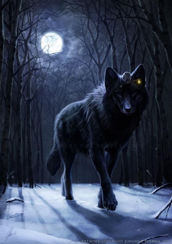 Dog Howling Like A Wolf At Night