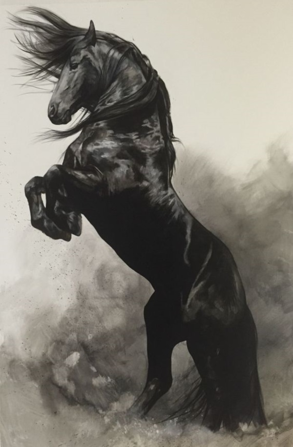 Welsh - Klaus Rabba | Pferdezeichnungen, Pferde malen ...  |Horse Art Drawings