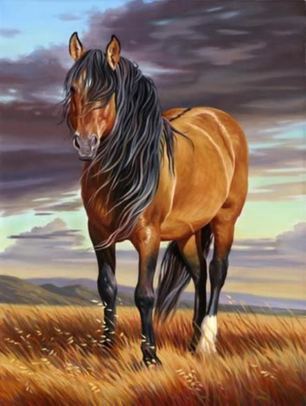 Striking horse paintings like never seen for Photos to paint