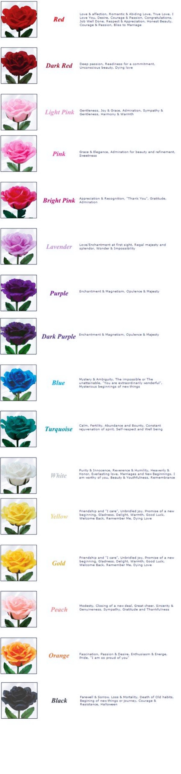 The-Real-Meaning-Of-The-Different-Rose-Colors