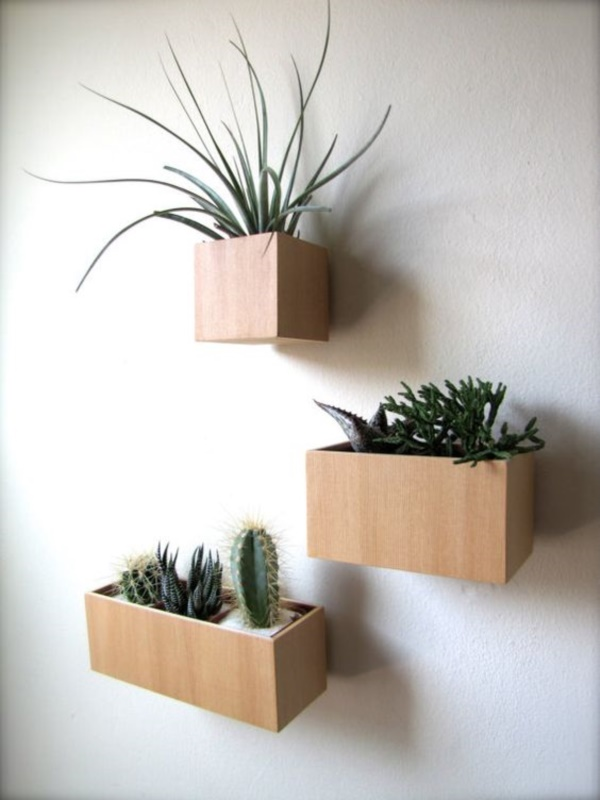 arresting-cactus-decoration-ideas