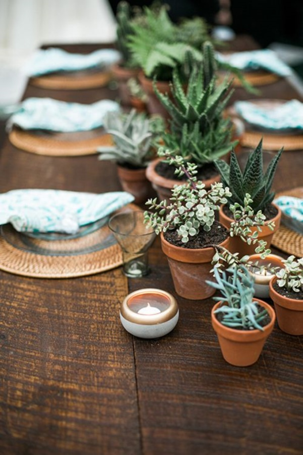 Arresting Cactus Decoration Ideas